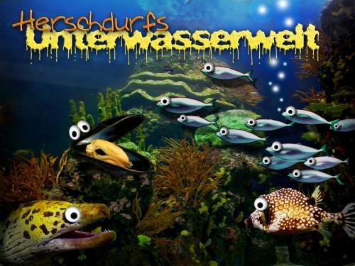 herschdurfs_unterwasserwelt_500px